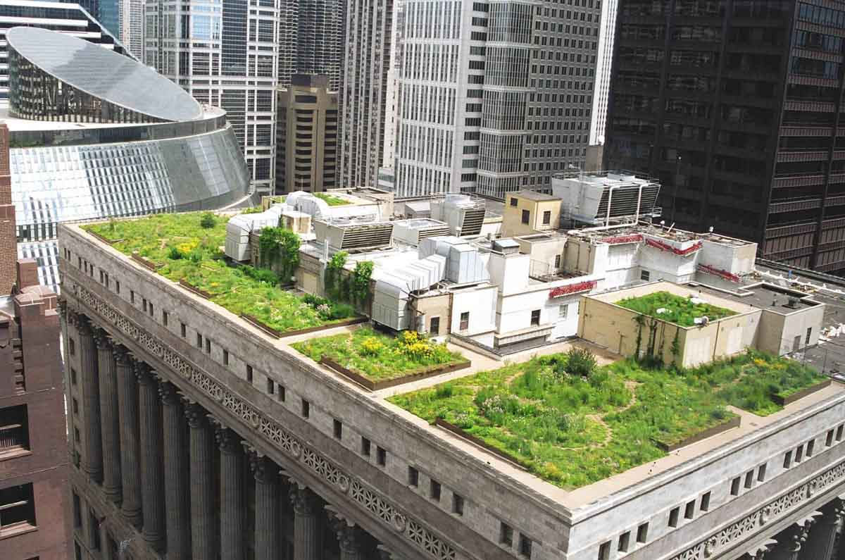 The City of Chicago has more than 500 green roofs, totaling seven million SF.